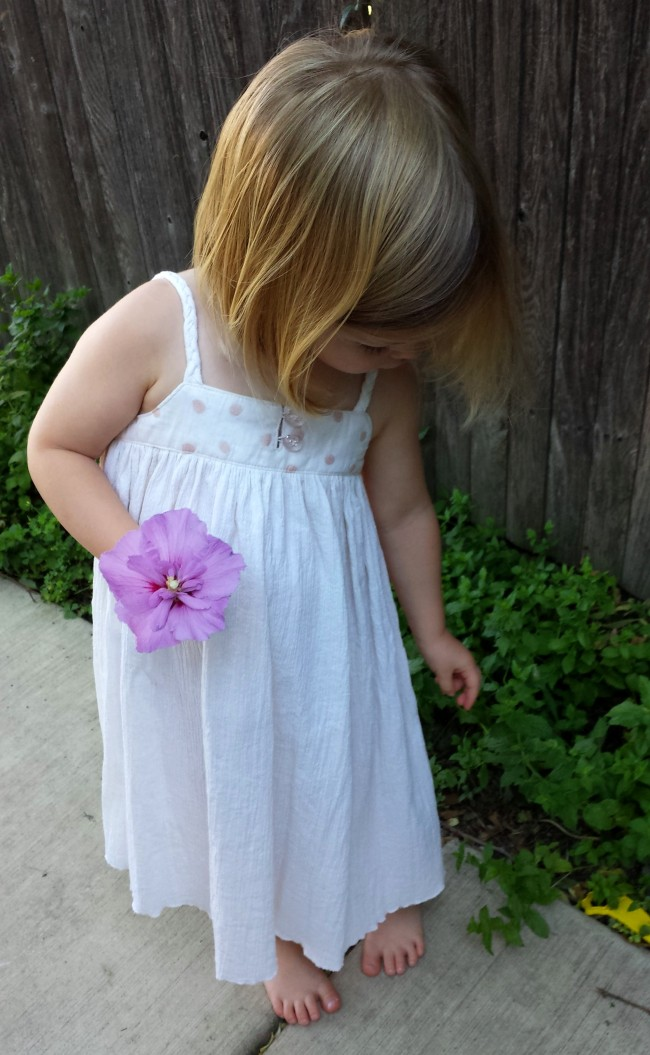 Figgy's Zephyr Sundress